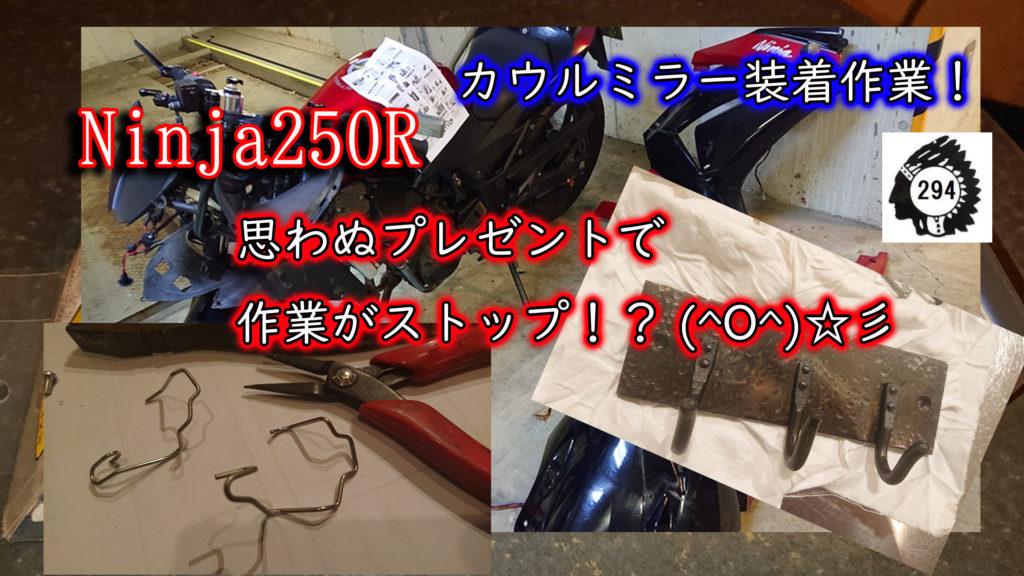 Ninja250R!新企画♪カウルミラーに交換すっぞ!!!その4 ぴょろゆきに後光が差す!?