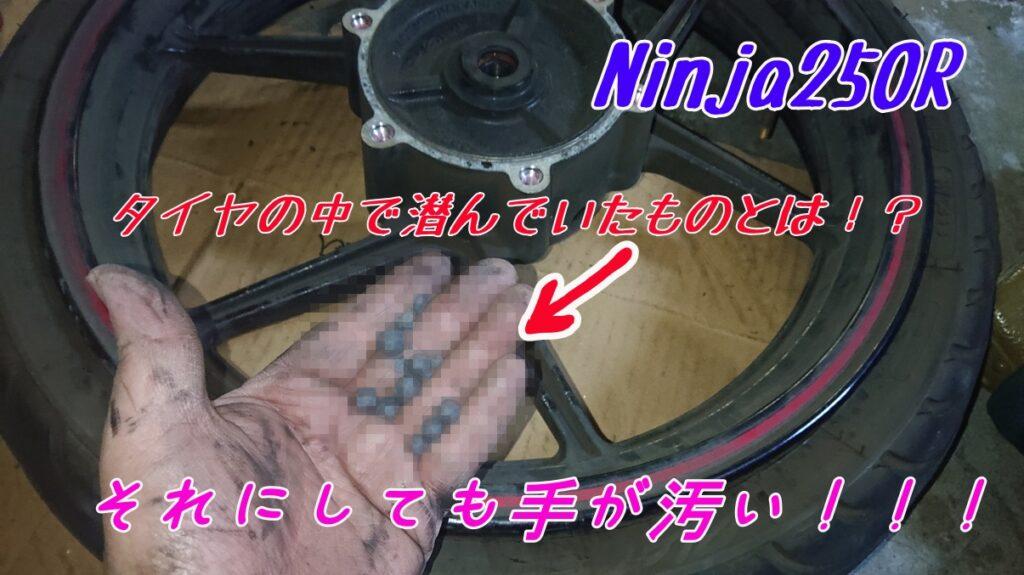 【Ninja250R】ブレーキパッドとディスクローターの交換だけのはずが!タイヤの中で潜んでいたモノとは!?【ブレーキパッド交換】